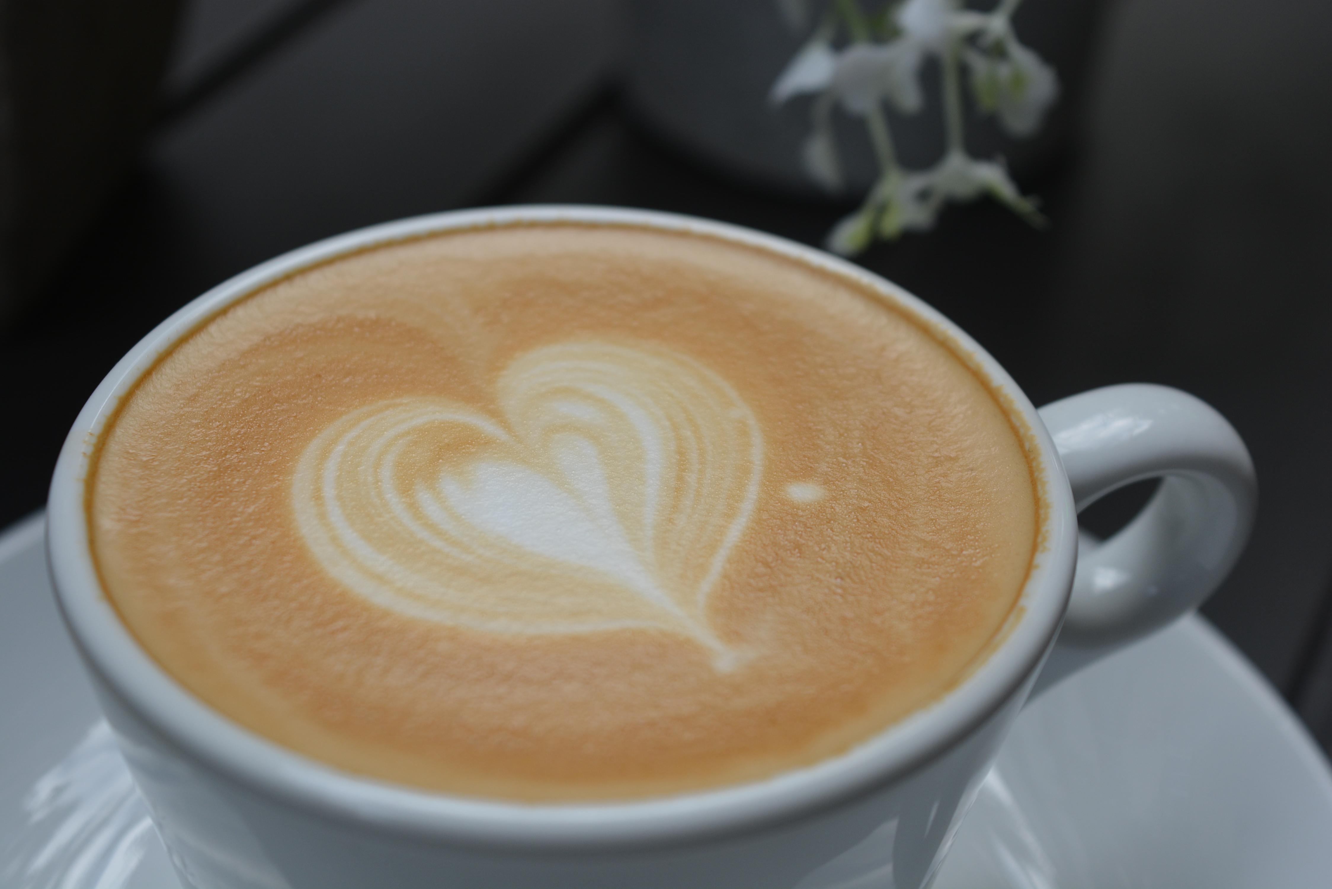 Nuestro café directo de Costa Rica